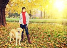 Νέο θηλυκό και η τοποθέτηση σκυλιών της το φθινόπωρο σε ένα πάρκο σε ένα ηλιόλουστο δ Στοκ φωτογραφία με δικαίωμα ελεύθερης χρήσης