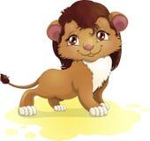 Νέο λιοντάρι Στοκ εικόνες με δικαίωμα ελεύθερης χρήσης