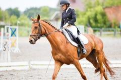Νέο κορίτσι αναβατών στο άλογο στον ανταγωνισμό εκπαίδευσης αλόγου σε περιστροφές Στοκ φωτογραφία με δικαίωμα ελεύθερης χρήσης