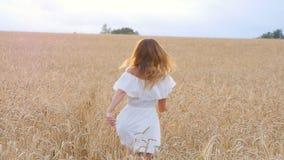 Νέο κορίτσι γυναικών στο άσπρο φόρεμα που τρέχει στον τομέα απόθεμα βίντεο