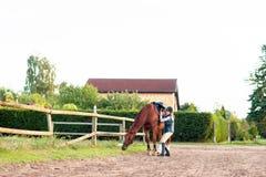 Νέο κορίτσι ιππικό με το άλογο κάστανών της Στοκ εικόνες με δικαίωμα ελεύθερης χρήσης