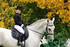Νέο κορίτσι με το άσπρο άλογο εκπαίδευσης αλόγου σε περιστροφές στοκ εικόνες