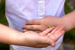 Νέο κορίτσι με το inchworm Στοκ φωτογραφίες με δικαίωμα ελεύθερης χρήσης