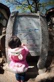 Νέο κορίτσι που φαίνεται χάρτης πετρών στην παλαιά πόλη Lijiang Dayan. Στοκ Φωτογραφίες