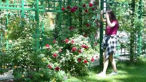 Νέο κορίτσι σε ένα γραφικό πάρκο απόθεμα βίντεο