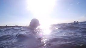 Νέο κορίτσι στον ωκεανό απόθεμα βίντεο