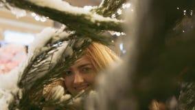 Νέο κρύψιμο γυναικών στους κλάδους ενός χνουδωτού πεύκου που καλύπτεται με το χιόνι Κλάδοι χριστουγεννιάτικων δέντρων στο χιόνι σ απόθεμα βίντεο