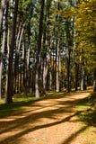 νέο μονοπάτι πάρκων που περ&p Στοκ Εικόνες