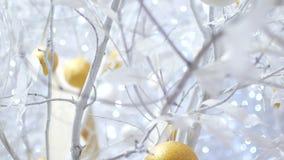 Νέο ντεκόρ έτους στα άσπρα χρώματα Σφαίρες όπως τα πορτοκάλια στα λευκά σαν το χιόνι δέντρα Το βίντεο είναι κατάλληλο για το υπόβ απόθεμα βίντεο