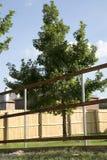Νέο ξύλινο κτήριο φρακτών της Νίκαιας Στοκ φωτογραφία με δικαίωμα ελεύθερης χρήσης