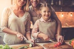 Νέο οικογενειακό μαγείρεμα Στοκ φωτογραφίες με δικαίωμα ελεύθερης χρήσης
