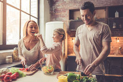 Νέο οικογενειακό μαγείρεμα Στοκ εικόνα με δικαίωμα ελεύθερης χρήσης