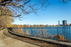 νέο πάρκο Υόρκη πανοράματο&sigm Στοκ Εικόνα