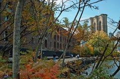 νέο πάρκο Υόρκη του Μπρούκλιν γεφυρών Στοκ Εικόνες