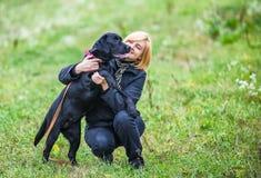 Νέο παιχνίδι γυναικών με το σκυλί στοκ εικόνες