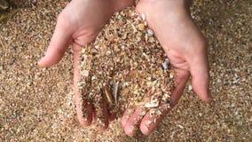 Νέο παιχνίδι χεριών γυναικών με την άμμο απόθεμα βίντεο