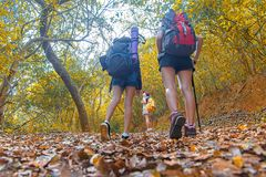Νέο περπάτημα γυναικών ομάδων οδοιπόρων φύσης φθινοπώρου Στοκ εικόνες με δικαίωμα ελεύθερης χρήσης