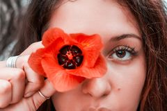 Νέο πορτοκαλί λουλούδι εκμετάλλευσης γυναικών στο μάτι της Στοκ φωτογραφίες με δικαίωμα ελεύθερης χρήσης