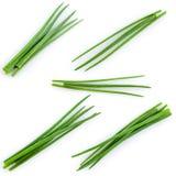 Νέο πράσινο σύνολο κρεμμυδιών που απομονώνεται στο λευκό Στοκ Εικόνα
