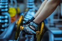 Νέο προκλητικό κορίτσι σε μια αθλητική γυμναστική στοκ φωτογραφία με δικαίωμα ελεύθερης χρήσης