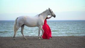 Νέο ρομαντικό κορίτσι στο κόκκινο φόρεμα που περπατά με το άσπρο άλογο ενάντια στον ήλιο στο υπόβαθρο της θάλασσας Αναβάτης γυναι απόθεμα βίντεο