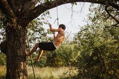 Νέο τολμηρό άτομο που αναρριχείται επάνω σε ένα δέντρο κερασιών στοκ φωτογραφία με δικαίωμα ελεύθερης χρήσης