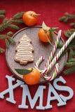 Νέο υπόβαθρο έτους ή Χριστουγέννων με τους κλάδους έλατου στοκ φωτογραφία με δικαίωμα ελεύθερης χρήσης