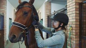 Νέο χαλινάρι σκλήρυνσης γυναικών στο άλογο φιλμ μικρού μήκους