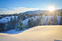 Νέο χιόνι στους λόφους βουνών Στοκ Εικόνα