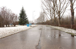 Νέο χιόνι στο πάρκο Στοκ φωτογραφίες με δικαίωμα ελεύθερης χρήσης