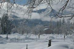 νέο χιόνι Στοκ Εικόνες