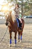 Νέο όμορφο άλογο οδήγησης brunette υπαίθριο στοκ εικόνες