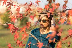 Νέο όμορφο έφηβη με τα γυαλιά ηλίου πίσω από τα κόκκινα φύλλα φθινοπώρου στο δέντρο Στοκ Εικόνες