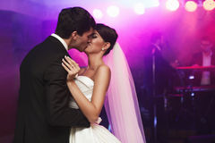 Νέο όμορφο γαμήλιο ζεύγος Στοκ Εικόνες