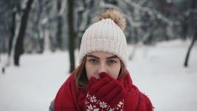 Νέο όμορφο κορίτσι μέσα στα θερμά ενδύματα που περπατούν κοντά στα χριστουγεννιάτικα δέντρα και που εξετάζουν τη κάμερα σε αργή κ απόθεμα βίντεο