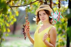 Νέο όμορφο κορίτσι που επιλέγει το ώριμο σταφύλι στην ηλιόλουστη ημέρα στην Ιταλία Στοκ φωτογραφία με δικαίωμα ελεύθερης χρήσης
