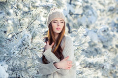 Νέο, όμορφο κορίτσι το χειμώνα υπαίθρια Στοκ Εικόνες