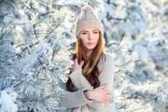 Νέο, όμορφο κορίτσι το χειμώνα υπαίθρια Στοκ φωτογραφία με δικαίωμα ελεύθερης χρήσης
