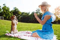 Νέο όμορφο ξανθό περπάτημα κοριτσιών, που παίζει με το σκυλί λαγωνικών στο πάρκο Στοκ Εικόνες