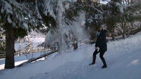 Νέο όμορφο περπάτημα γυναικών στο χιονώδες χειμερινό δάσος είναι ευτυχής και εύθυμη Το κορίτσι βουρτσίζει το χιόνι από απόθεμα βίντεο
