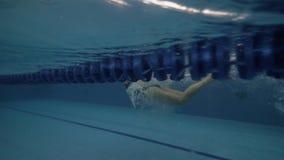 Νέο ύφος πεταλούδων κολύμβησης γυναικών κατά τη διαφανή υποβρύχια άποψη λιμνών νερού απόθεμα βίντεο