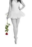 Νέο ballerina που θέτει και που χορεύει Στοκ Εικόνα