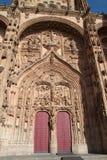 Νέο Chatedral Σαλαμάνκας Στοκ φωτογραφίες με δικαίωμα ελεύθερης χρήσης