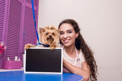 Νέο groomer και χαριτωμένος πίνακας ι εκμετάλλευσης σκυλιών τεριέ του Γιορκσάιρ κενός σαλόνι κατοικίδιων ζώων Στοκ Φωτογραφίες