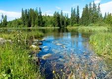 Νέο pleso Strbske λιμνών στα βουνά Tatras Στοκ εικόνες με δικαίωμα ελεύθερης χρήσης