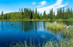 Νέο pleso Strbske λιμνών στα βουνά Tatras Στοκ Φωτογραφίες