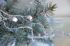 νέο s έτος κλάδων Στοκ φωτογραφία με δικαίωμα ελεύθερης χρήσης