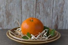 Νέο Tangerine έτους ` s Στοκ Φωτογραφίες