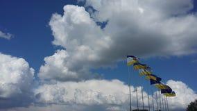 Νίκαια πολύ συμπαθητική Στοκ φωτογραφίες με δικαίωμα ελεύθερης χρήσης