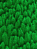 Νανο-δομές νικελίου Στοκ φωτογραφία με δικαίωμα ελεύθερης χρήσης